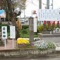 Photos: 国済寺・2