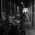 Photos: 自転車の牢獄と看守…なんて。