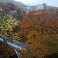 蔵王温泉の朝