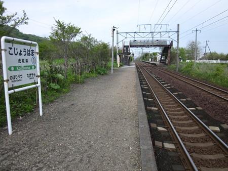 虎杖浜駅2
