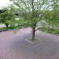 Photos: サッポロビール庭園駅4