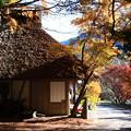写真: 継桜王子