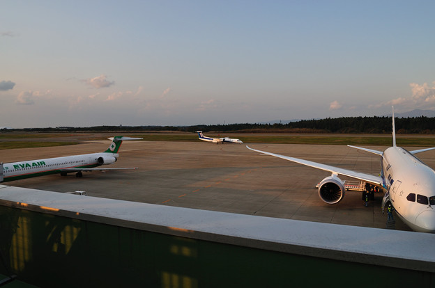 ANAのQ400到着 13-11-04 15-48