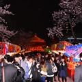 写真: 16上野公園8