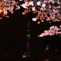 16隅田川5