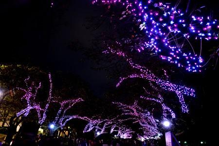 16上野公園4