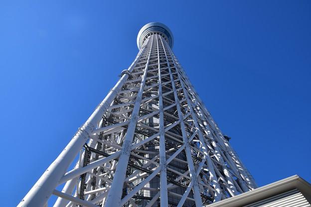 写真: 東京スカイツリータウン6