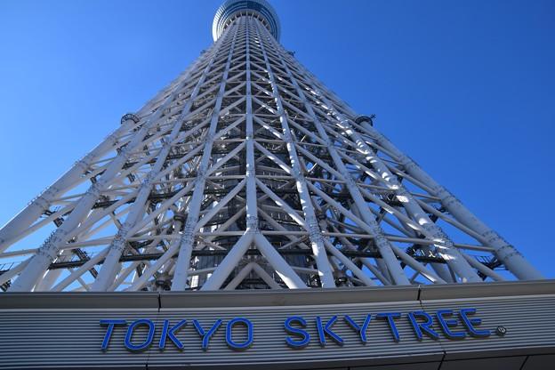 写真: 東京スカイツリータウン7