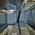 写真: 新宿NSビル下から