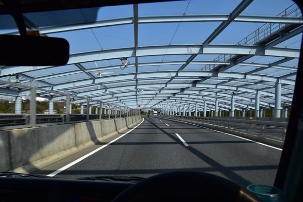 170325 東京ゲートブリッジ19