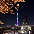 17隅田川1