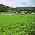 写真: 真岡鉄道8