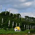 写真: 無風で鮎の日干しになってる。これじゃ涼を感じませんね(^_^;)