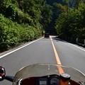 Photos: 奥多摩871号からの景色4