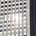 写真: 西新宿高層ビル群