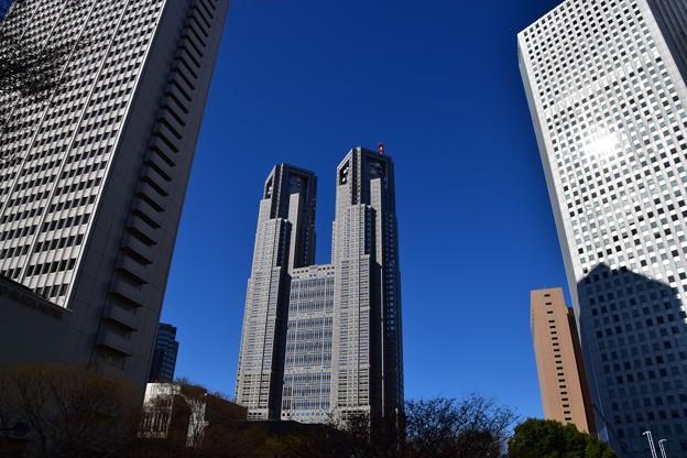 西新宿高層ビル群