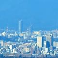 写真: 新宿野村ビルから八王子