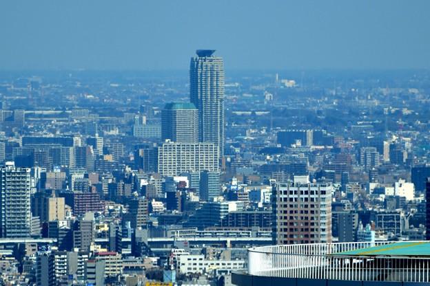都庁からエルザタワー55(川口)