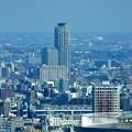 写真: 都庁からエルザタワー55(川口)