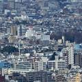 写真: 都庁から阿佐ヶ谷