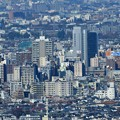 写真: 都庁から荻窪