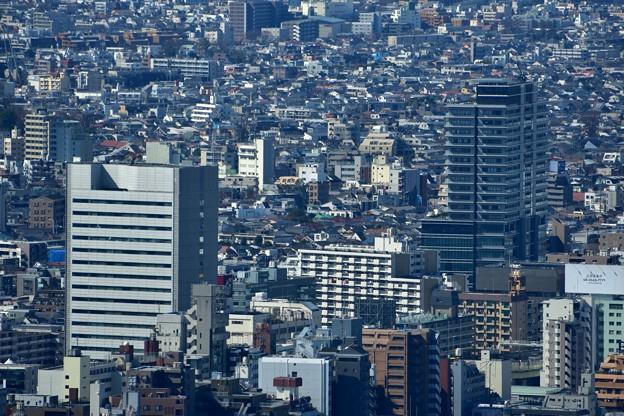 都庁から笹塚