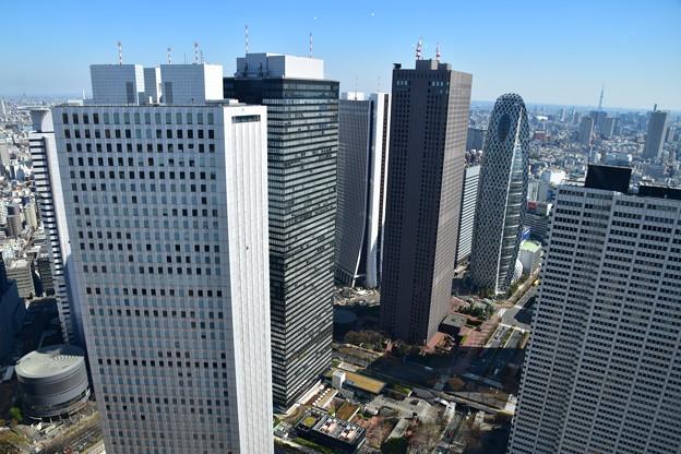 都庁から西新宿1