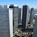 写真: 都庁から西新宿