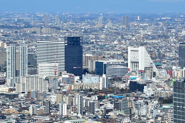 都庁から中野