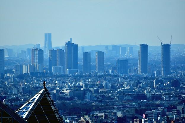 都庁から武蔵小杉