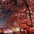 18上野公園7