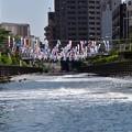 写真: 東京スカイツリータウンこいのぼり
