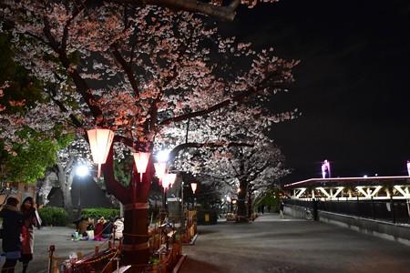 19隅田川1