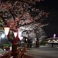 Photos: 19隅田川1