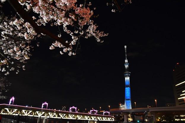 19隅田川2