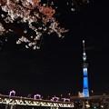 Photos: 19隅田川2