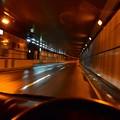 Photos: 雨の新宿御苑トンネル