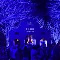 Photos: 19代々木公園青の洞窟1