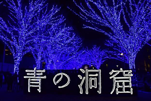 19代々木公園青の洞窟12