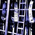 写真: 【第136回モノコン】壁際の風鈴