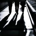 写真: 影