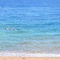 写真: 海はかなり綺麗。シュノーケルでもたくさんの魚が観られます