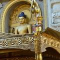 写真: マハーボディー寺院の裏。ここでブッダは悟りを開いた
