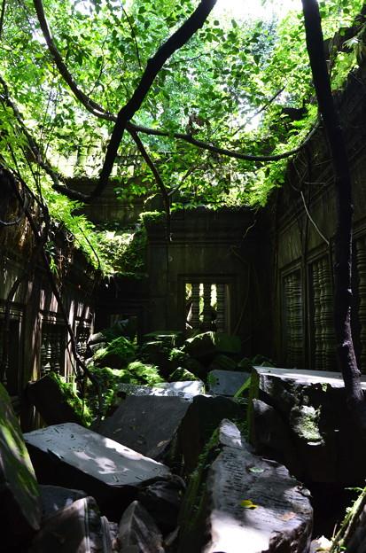 Photos: ベンメリア遺跡1