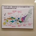 Photos: 秀吉清正記念館 - 022:桶狭間の戦いの頃の主な戦国大名の勢力、その後の織田信長勢の主な戦い