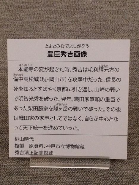 秀吉清正記念館 - 031:豊臣秀吉画像の説明