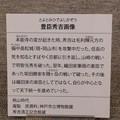 Photos: 秀吉清正記念館 - 031:豊臣秀吉画像の説明