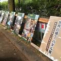 写真: 名古屋城まるはち博覧祭:東門会場 - 08(世界の横丁パネル展)