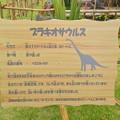 写真: ノリタケの森:巨大恐竜がやってきた! - 11