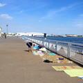 写真: 名古屋みなと祭 2013:花火の場所取り - 4